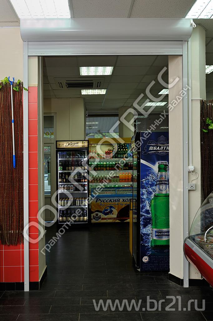 Гаражные ворота цена, где купить в Старом Осколе